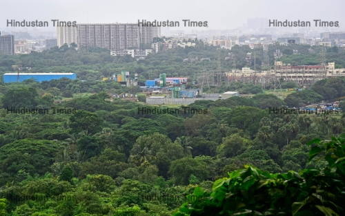 Former Union Environment Minister Jayaram Ramesh Visits Mumbai For Saving City's Aarey Forest