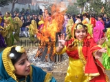 Lohri Celebrations In Punjab