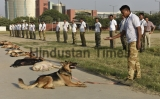 Training Exercises Of CISF Dog Squad