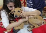 Bollywood Actors Soha Ali Khan And Alia Bhatt At Puppies And Kittens Adopt-A-Thon 2016