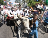 Congress Protest Against Petrol Price Hike