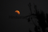 Super Blue Blood Moon Seen In India
