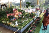Thane Municipal Corporation Organises An Annual 11th Tree Exhibition