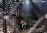 Air Coolers, Water Sprinklers Set Up at Cages To Help Animals At Katraj Zoo