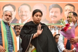 Union Minister Smriti Irani Campaigns Ahead Of Delhi Assembly Election