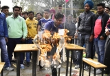 Shahzada Nand College Hosts Annual Sports And Athletics Meet In Amritsar